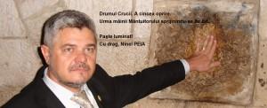 Ninel PEIA Deputat